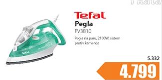Pegla FV3810