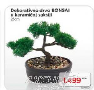 Dekorativno drvo Bonsai