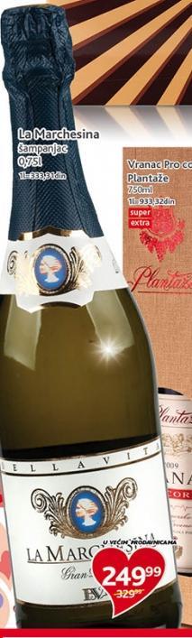 Penušavo vino