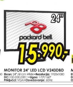 LED monitor V243DBD