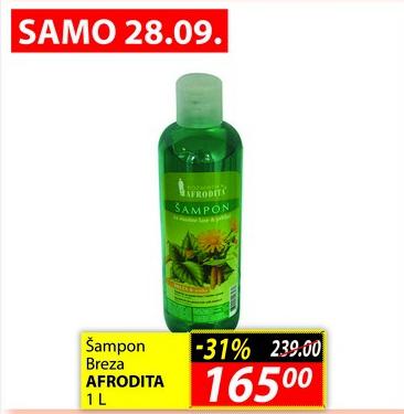 Šampon breza