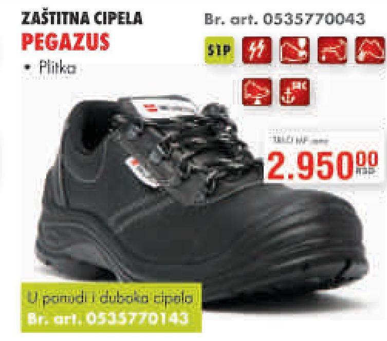 Cipele Pegazus