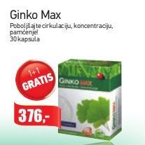 Ginko Max