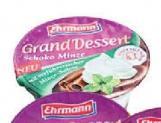 Mlečni desert čoko mint