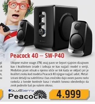 Zvučnici SW-P40