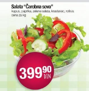 Salata čarobna sova
