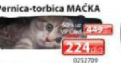 Pernica torbica Mačka