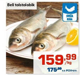 Riba tolstolobik
