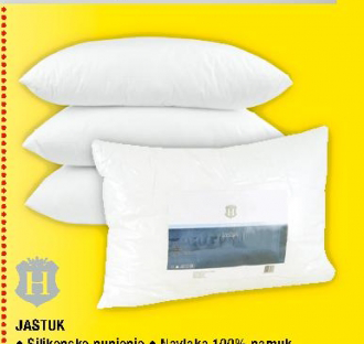 Jastuk 50x70cm