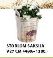 Saksija STORLOM