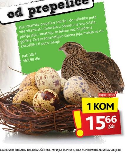Sveža jaja od prepelice