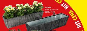 Saksija Zonza