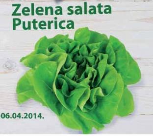 10% popusta na salatu Putetricu