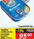Sardina limun