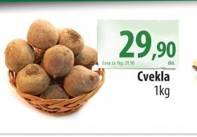 Cvekla