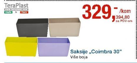 Saksija Coimbra 30