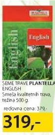 Seme trave English