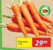 Šargarepa