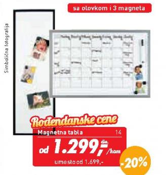 Magnetni organizator
