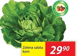 Salata zelena