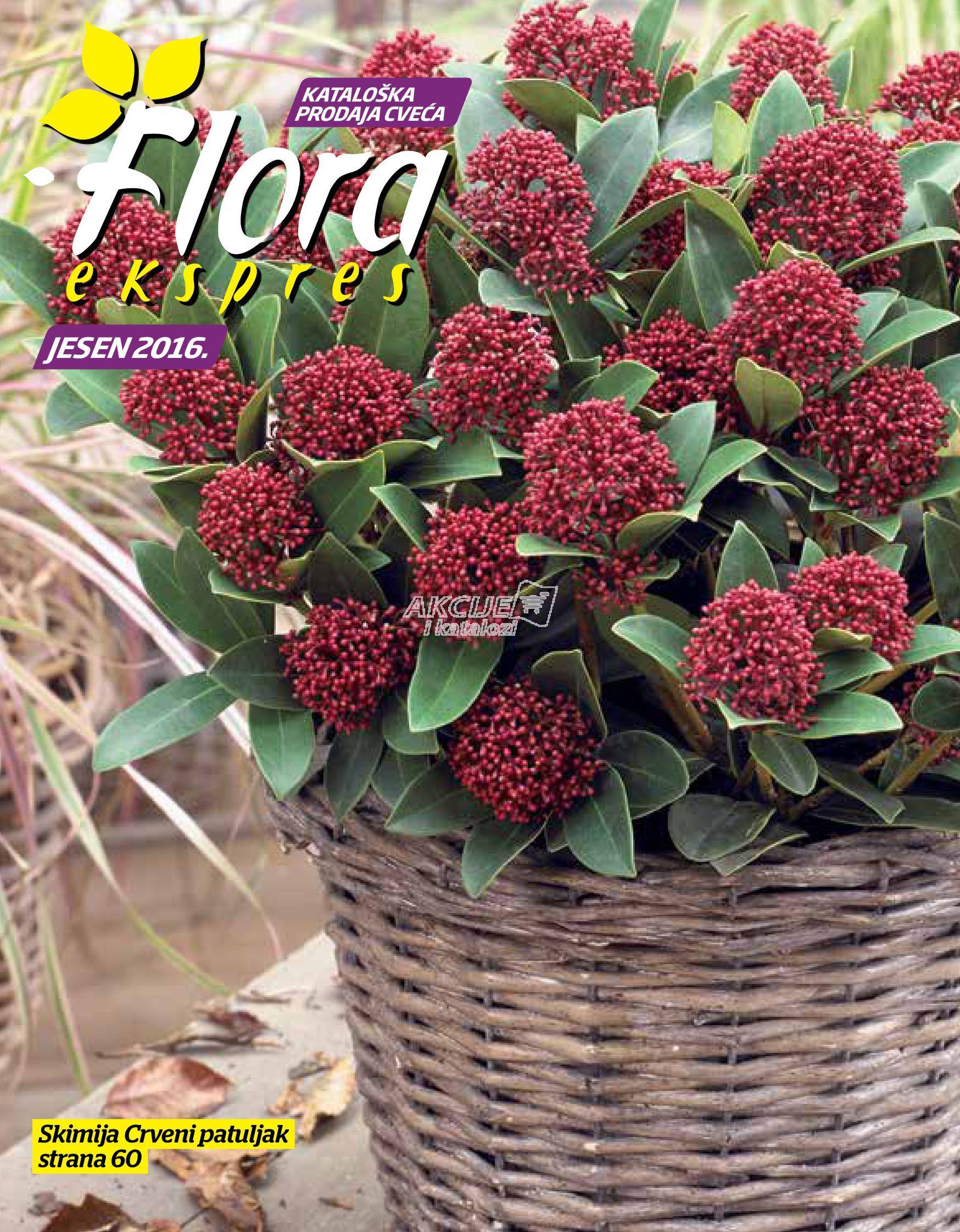 Flora Ekspres - Redovna akcija jesenje kupovine